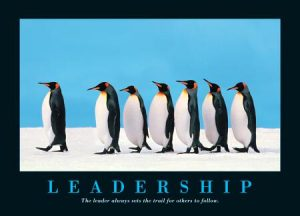 Nectarine Leadership penguins